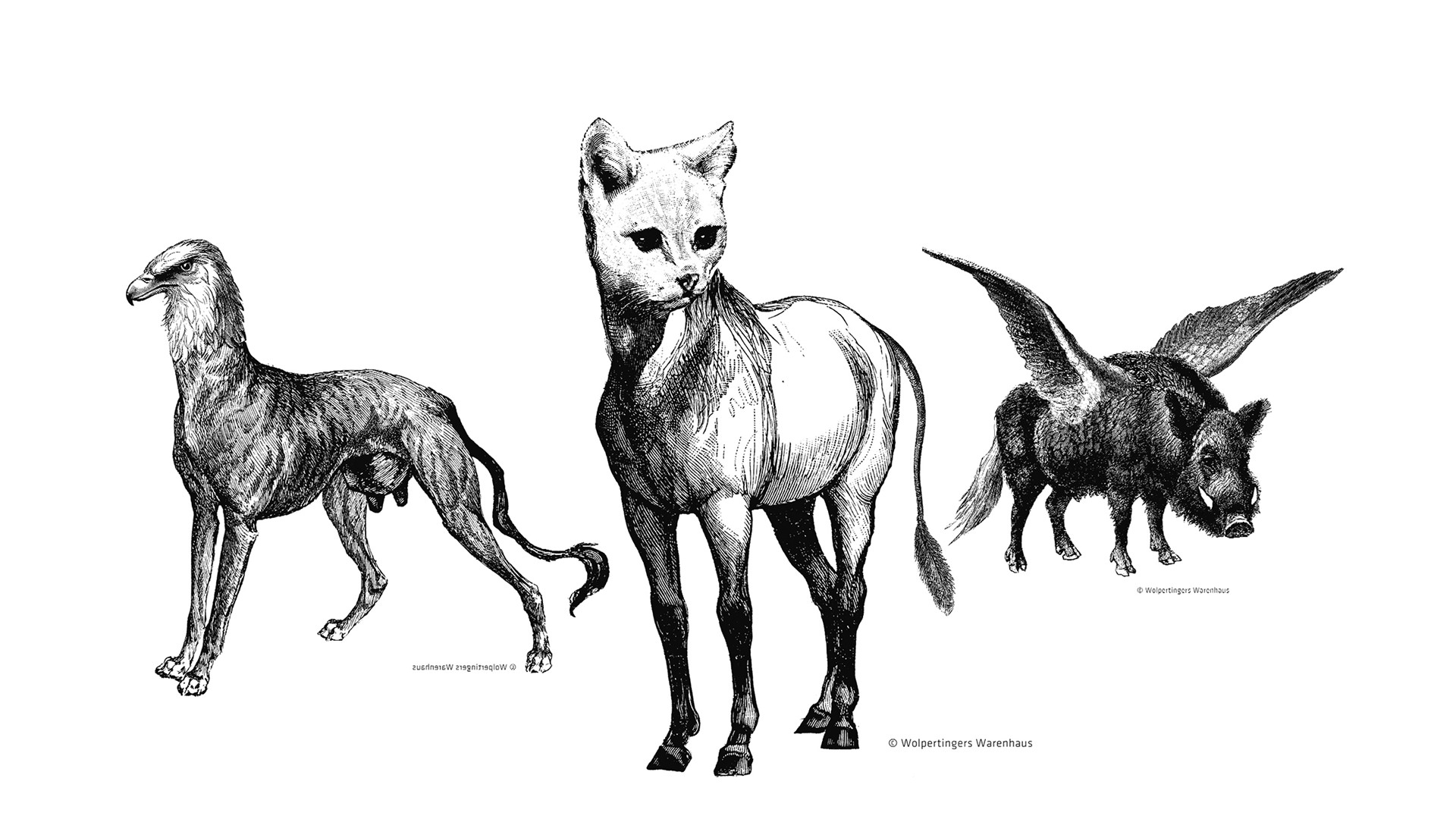 Wolpertinger-»Sprifertze« Pferd/Katze